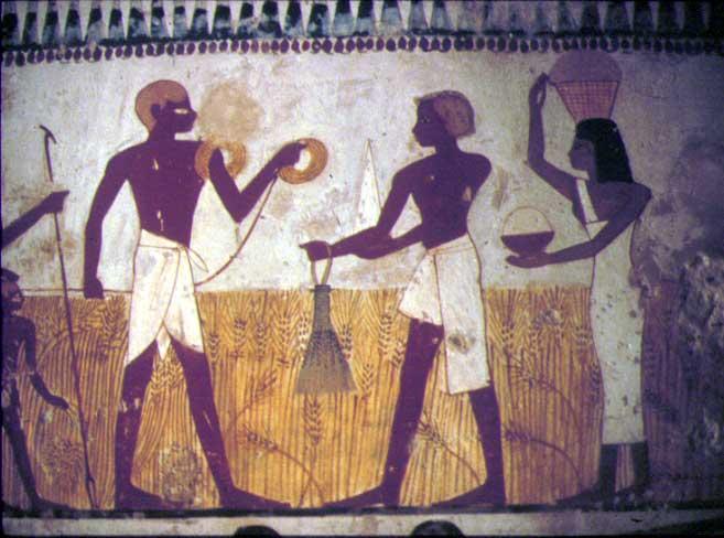 """Tombe de Menna (TT69) secteur de Cheikh abd el-Gourna-nord, dans l'enclos """"dit supérieur"""", XVIIIème dynastie (1401-1390 av J.C.). Deux arpenteurs, la chaîne enroulée autour de l'épaule mesurent le champ, de façon à estimer la récolte sur pied et à calculer la part qui revient au maître."""