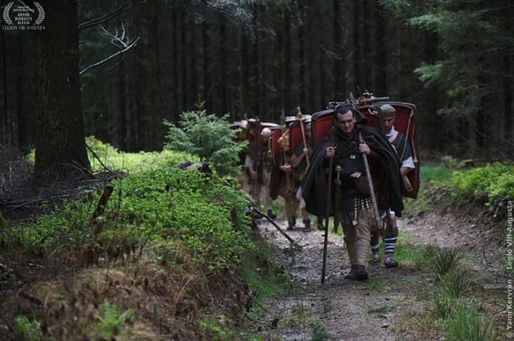 Dans les forêts du Morvan