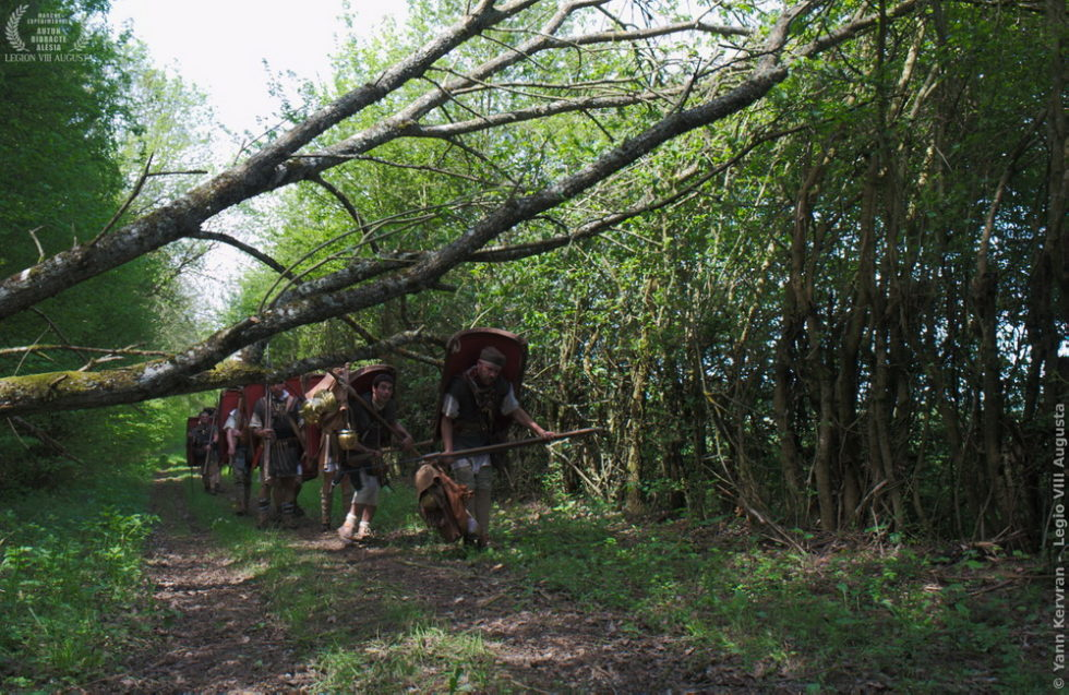 dans la forêt après Brianny