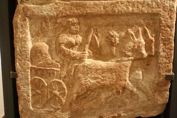 Chariot tiré par des mulets à Strasbourg