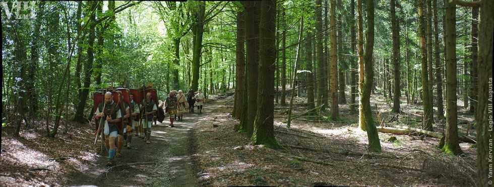 la colonne progressant dans la forêt du Morvan