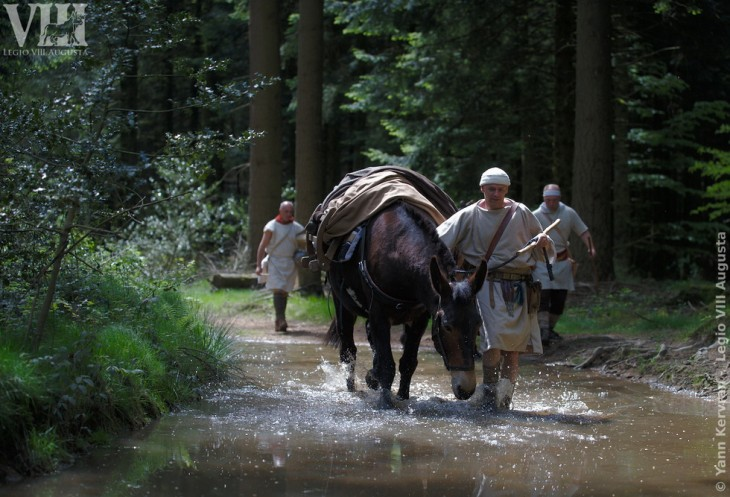 Les mules bâtées et leurs muletiers