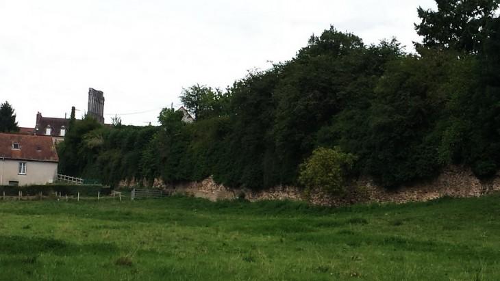 Rempart visible à partir de la Promenade Albert Montmerot longeant la rivière (l'Arroux) avec la porte d'Aroux en fond à gauche.