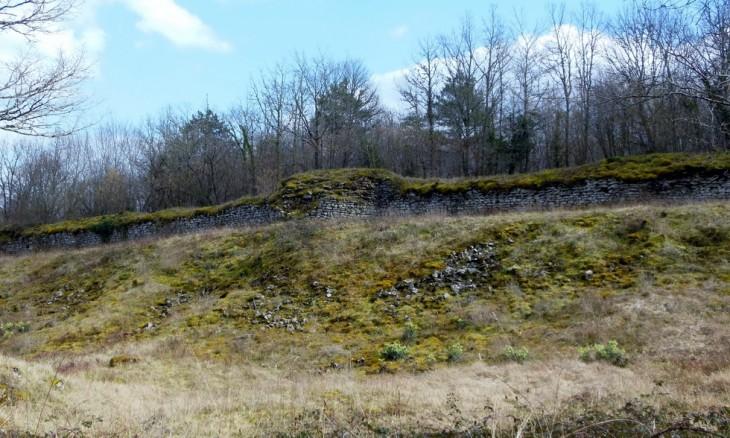 vestiges des fortifications du camp de Cora proche d'Arcy sur Cure
