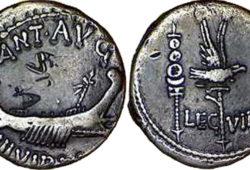 monnaie Legio VIII Augusta - marcus antonius